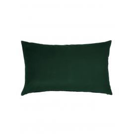 Naco Vert